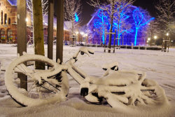 Snow & Bicycles Westerpark